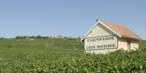 Champagne_roederer_page-producteur