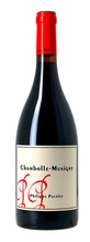 Chambolle-Musigny Philippe Pacalet Village 2019 Rouge 0,75